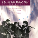 Skylife/Turtle Island String Quartet