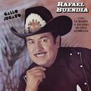 Gallo Jugado/Rafael Buendía Con la Banda El Recodo de Cruz Lizarraga