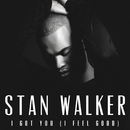 I Got You (I Feel Good)/Stan Walker