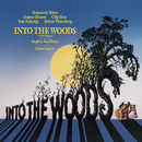 Into the Woods (Original Broadway Cast Recording)/Original Broadway Cast of Into the Woods