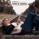 The Best Of Sophie B. Hawkins/Sophie B. Hawkins
