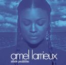Infinite Possibilities/Amel Larrieux