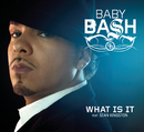 What Is It feat.Sean Kingston/Baby Bash