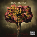New Politics/New Politics
