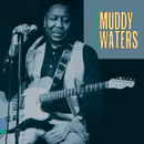 King Of The Electric Blues/Muddy Waters