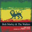 Collections/Bob Marley