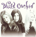 Wild Orchid/Wild Orchid