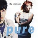 Pure/The Primitives