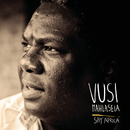 Say Africa/Vusi Mahlasela
