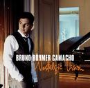 Nostalgic Vision/Bruno Böhmer Camacho