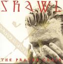 Shawl/The Prayer Chain