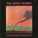 Permanent Damage/The Icicle Works
