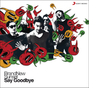 Say Goodbye/BrandNew Sunset