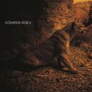 Hide U (ES Dubs Vocal Mix)/Kosheen