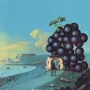 Wow (CD W/Bonus Tracks)/Moby Grape