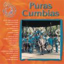 Puras Cumbias/Banda Sinaloense el Recodo de Cruz Lizárraga
