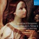 The Angel's Voice/Ensemble La Sestina