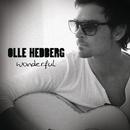 Wonderful/Olle Hedberg