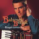 Tangó-Harmonika/Bernát Babicsek