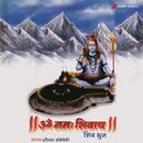 Om Namah Shivay/Shounak Abhisheki
