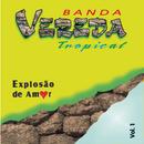 Explosão De Amor/Banda Vereda Tropical