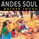 Andes Soul/Raices Incas