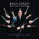 World Of Percussion/Engin Gürkey