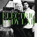 Wondering/Electric Lady Lab