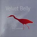 The Landing/Velvet Belly