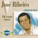 A Beleza da Rosa/José Ribeiro