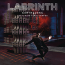 Earthquake feat.Tinie Tempah/Labrinth