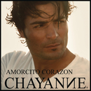 Amorcito Corazon/Chayanne