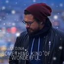 Something Kind of Wonderful/Chris Medina