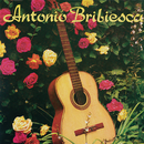 Antonio Bribiesca/Antonio Bribiesca