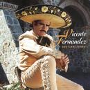 Vicente Fernandez Y Sus Canciones/Vicente Fernández