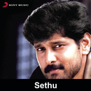 Sethu (Original Motion Picture Soundtrack)/Ilaiyaraaja