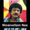 Ninaivellam Nee (Original Motion Picture Soundtrack)/M.S. Viswanathan
