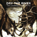 The Chambers & The Valves/Dry the River