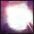 Stackars lilla värsting (D. Lissvik Remix)/Samling
