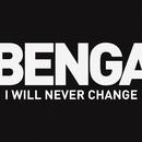 I Will Never Change (2012)/Benga