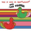 Bajo el Cielo de Aguascalientes/Dueto Las Palomas