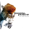 The New Black/Strapping Young Lad