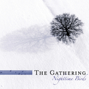 Nighttime Birds (Reissue)/The Gathering