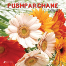 Pushparchane Vol. 3/Chitra