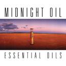 Essential Oils/Midnight Oil