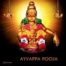 Ayyappa Pooja/Puttur Narasimha Nayak