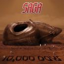 10,000 Days/Saga
