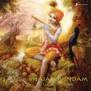 Bhajagovindam/Unni Menon