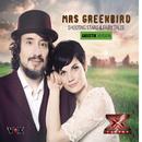 Shooting Stars & Fairy Tales (Akustik Version)/Mrs. Greenbird