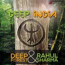 Deep India/Deep Forest & Rahul Sharma